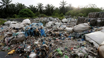 Devolverán contenedores de plástico a Reino Unido