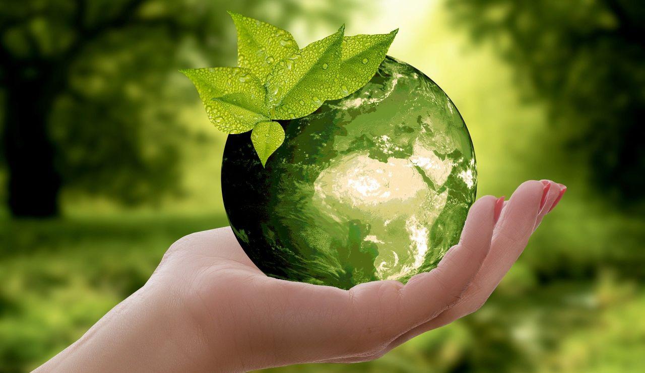 Ayudas y subvenciones a empresas sostenibles