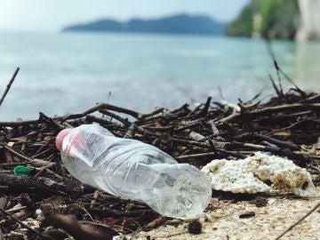 Un alto porcentaje de los plásticos que desechamos acaba en vertederos o en el medio ambiente.