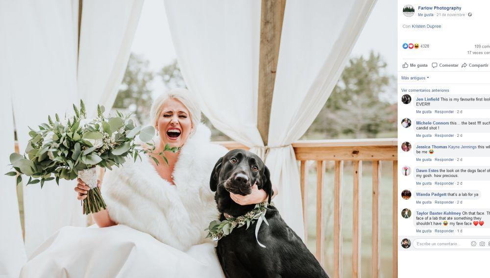 Foto de una novia y su perro
