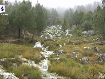 Así funciona la biomasa, la energía renovable que ayuda a luchar contra la España vaciada
