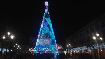 El árbol de la Plaza Mayor es el más alto de la región