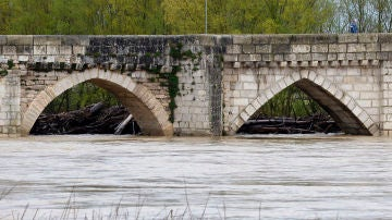 Río Pisuerga en Valladolid