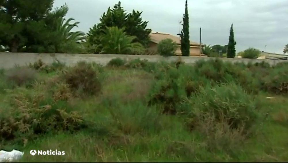 Asalto muy violento a una pareja de octogenarios en Novelda, Alicante