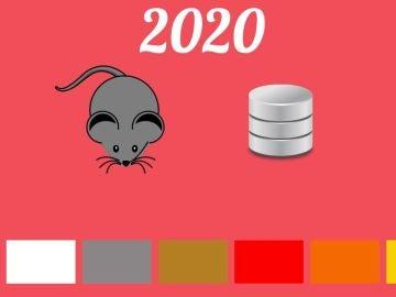 Cómo atraer la suerte a tu casa en 2020