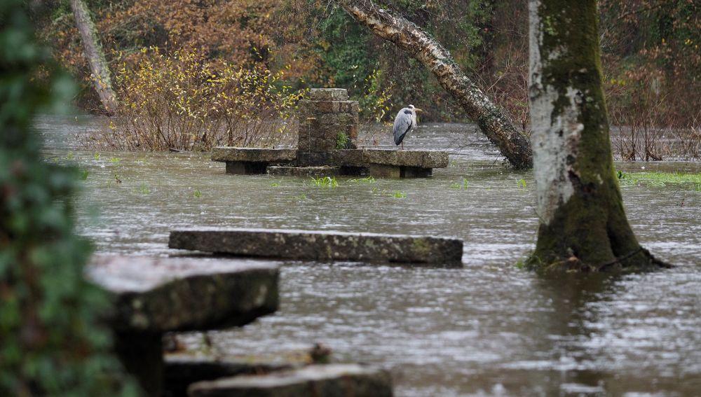 Área recreativa anegada por el agua en Asturias.