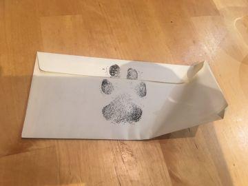 Escriben una carta al perro de sus vecinos