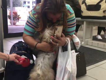 Una mujer se reúne con su perro perdido