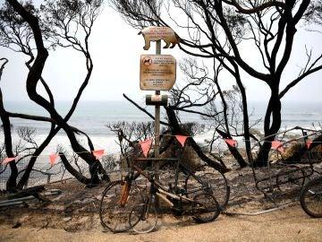"""Australia declara en """"estado de desastre"""" la ciudad de Victoria por primera vez en su historia debido a los incendios"""
