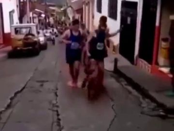 Lluvia de criticas a un atleta que golpeó a un perro callejero