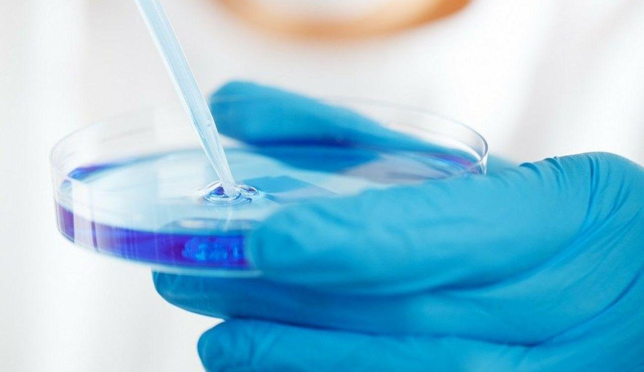 Un 5% de tumores de vejiga en Europa son atribuibles a la exposición de químicos en agua potable