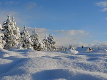 Día Mundial de la Nieve 2020