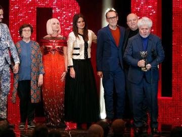 'Dolor y Gloria', de Pedro Almódovar, gran triunfadora de los Premios Feroz con 6 galardones