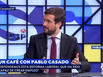 Líder del PP, Pablo Casado.