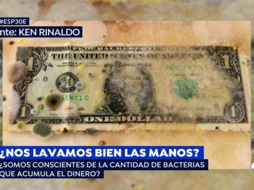Bacterias en los billetes