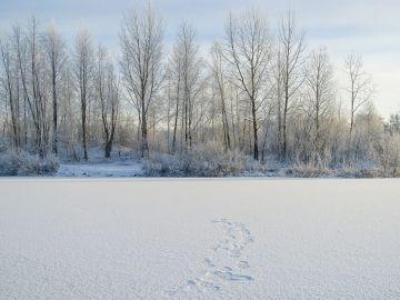 Siberia (archivo)