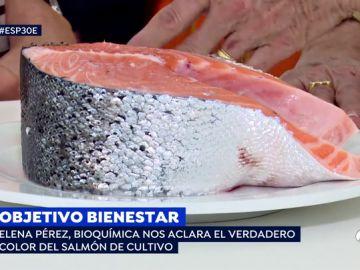Elena Pérez, bioquímica, nos cuenta el verdadero color del salmón de cultivo