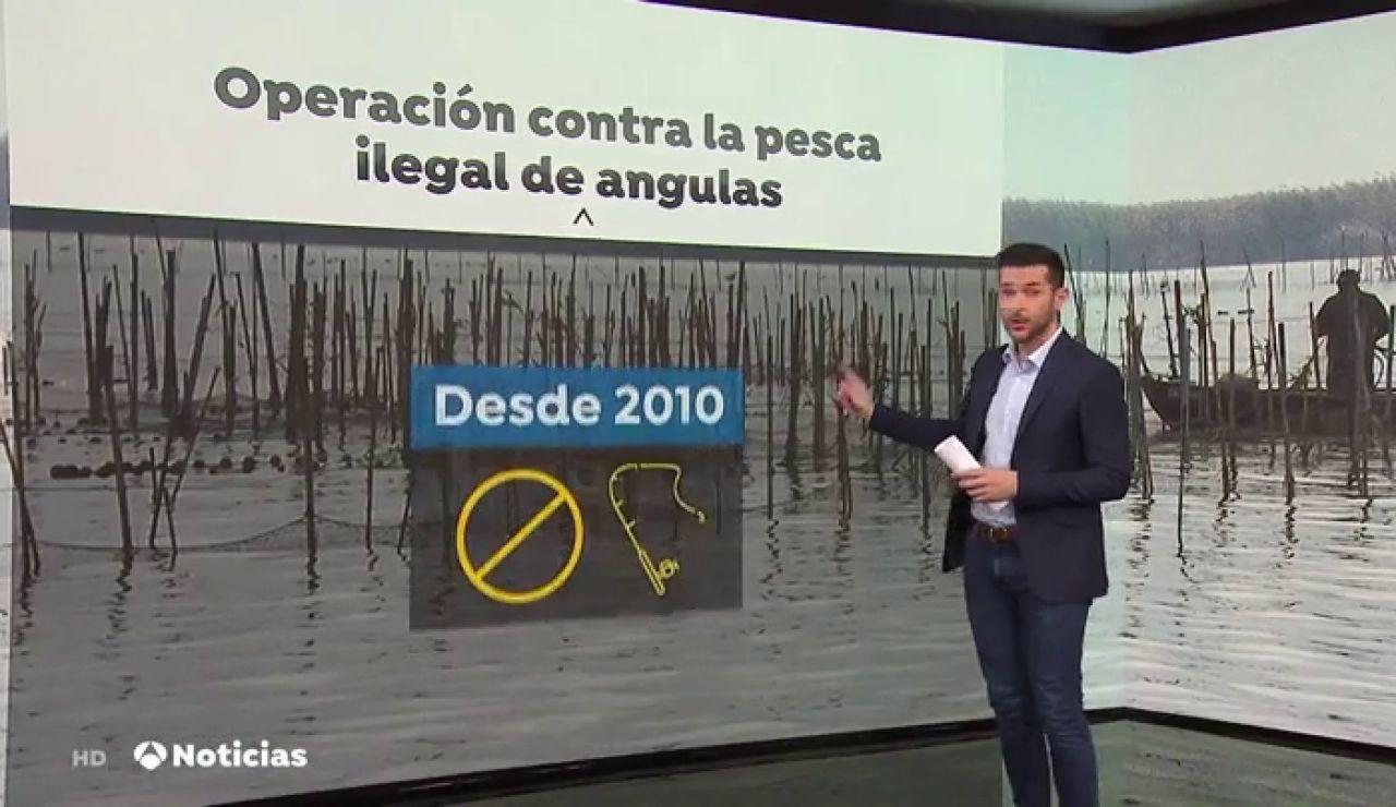 La Guardia civil requisa un total de 54 anguleras ilegales en el río Guadalquivir