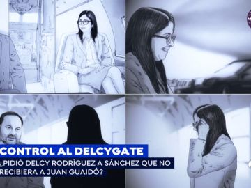 El 'Delcygate'
