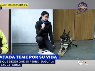 Una víctima de violencia de género exige que dejen que su perra la acompañe las 24 horas para poder defenderse