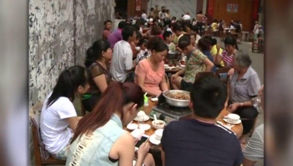Shenzhen quiere prohibir comer gatos y perros para luchar contra el coronavirus