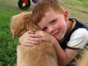 Un niño abraza a un perro en un parque