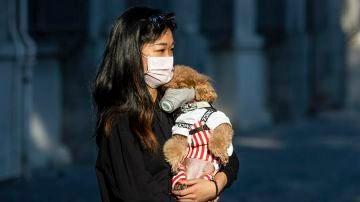 Mujer llevando a su perro con mascarilla