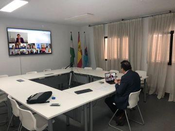 Alcalde de La Rinconada por videoconferencia