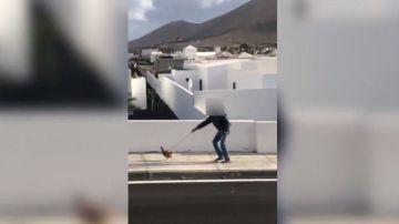 Imagen del vecino denunciado por pasear a una gallina saltándose el confinamiento
