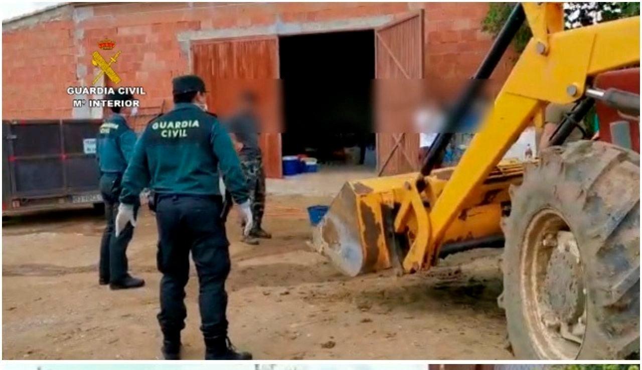 La Guardia Civil sorprende a un grupo de personas realizando una matanza en pleno confinamiento por el coronavirus