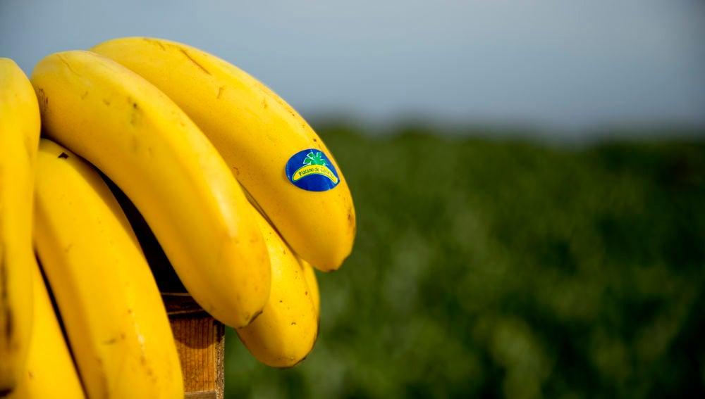 El plátano es una de las frutas más consumidas en España durante todo el año