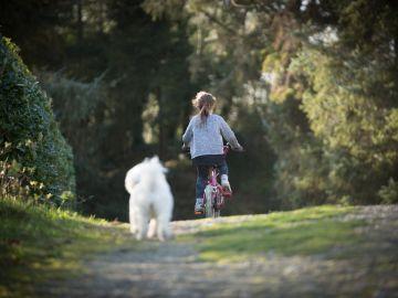 Los niños podrán salir con bicicleta en las salidas a la calle durante el confinamiento del coronavirus