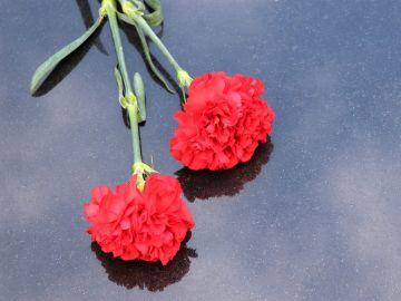 Portugal conmemora el 74 aniversario de la Revolución de los Claveles marcado por el coronavirus