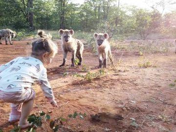 Niña jugando con hienas