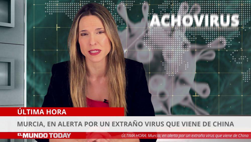 Achovirus