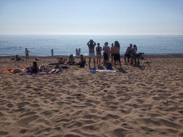 Coronavirus Barcelona: Gente bañándose, tomando el sol y en grupos en la Barceloneta | Última hora Cataluña