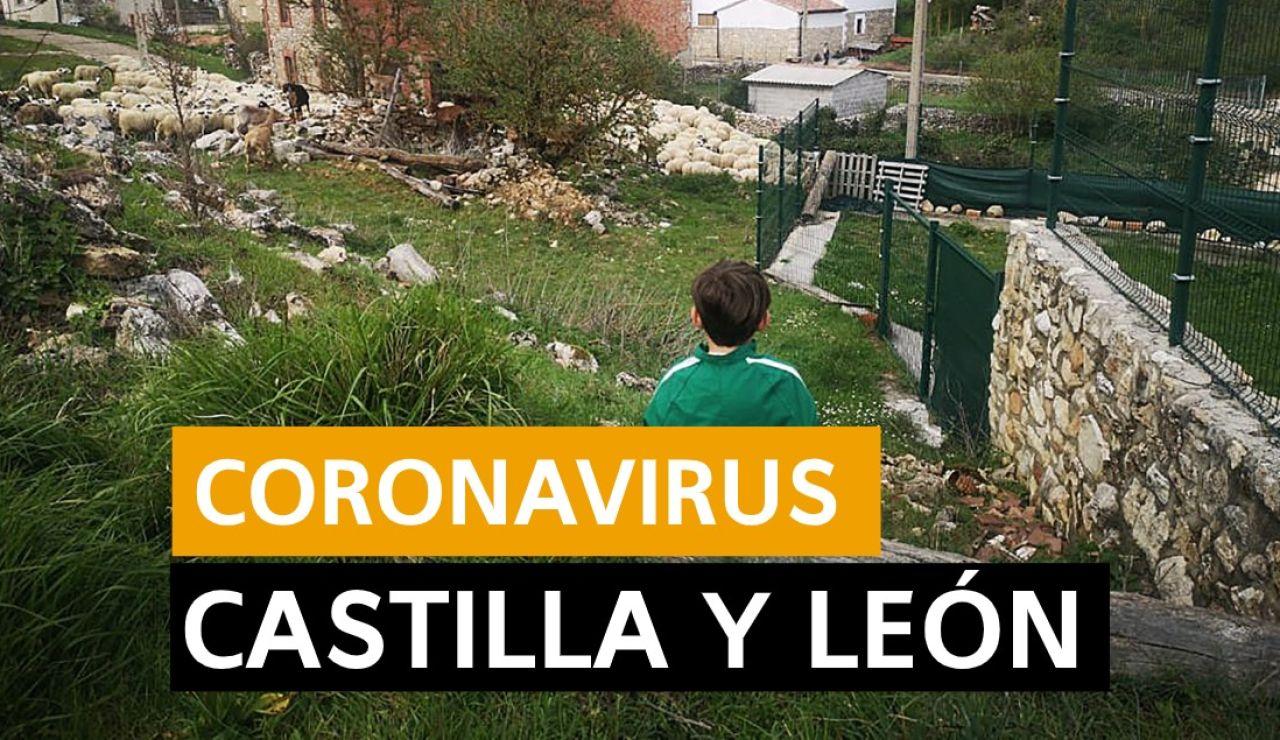 Coronavirus Castilla y León hoy: Fase 1 desescalada, datos de hoy y últimas noticias viernes 22 de mayo, en directo | Última hora Castilla y León