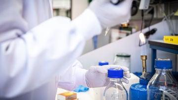 Investigadores espanoles desarrollan farmacos antivirales para impedir el transporte del coronavirus dentro de las celulas