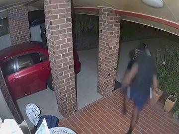 Ladrones entrando en casa