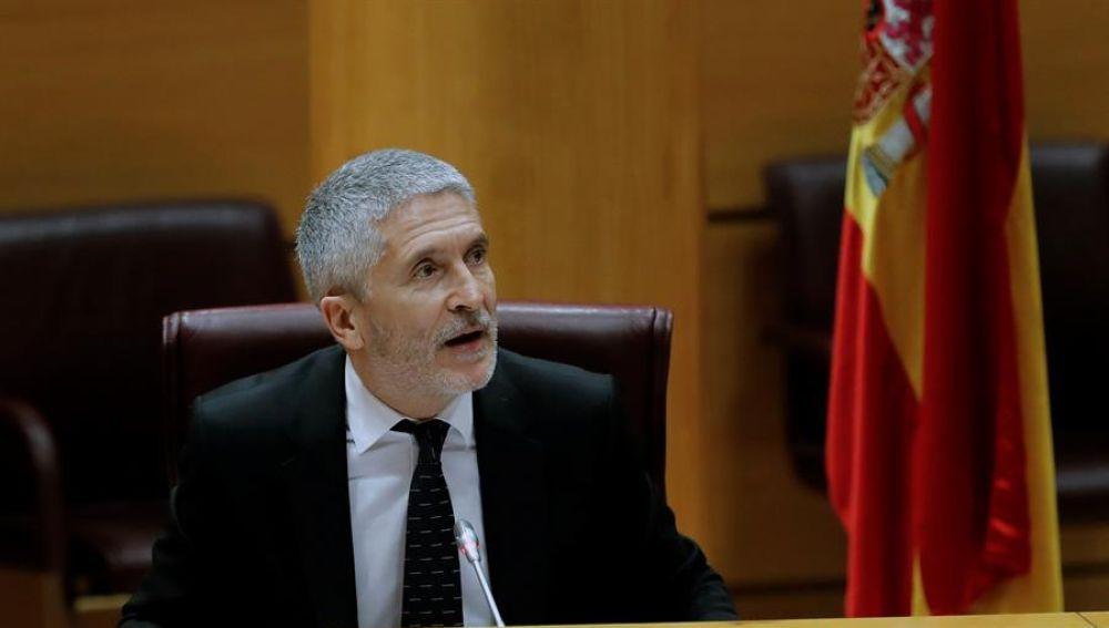 Fernando Grande-Marlaska, ante la Comisión de Interior en el Senado