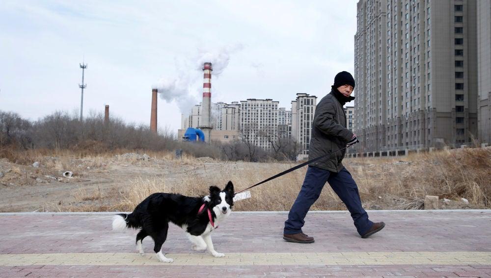 Un hombre pasea a su perro en Harbin (China)