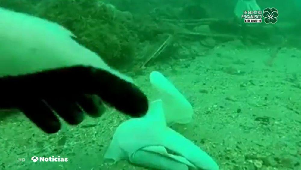 Las imágenes de cientos de guantes y mascarillas contra el coronavirus tiradas en el suelo