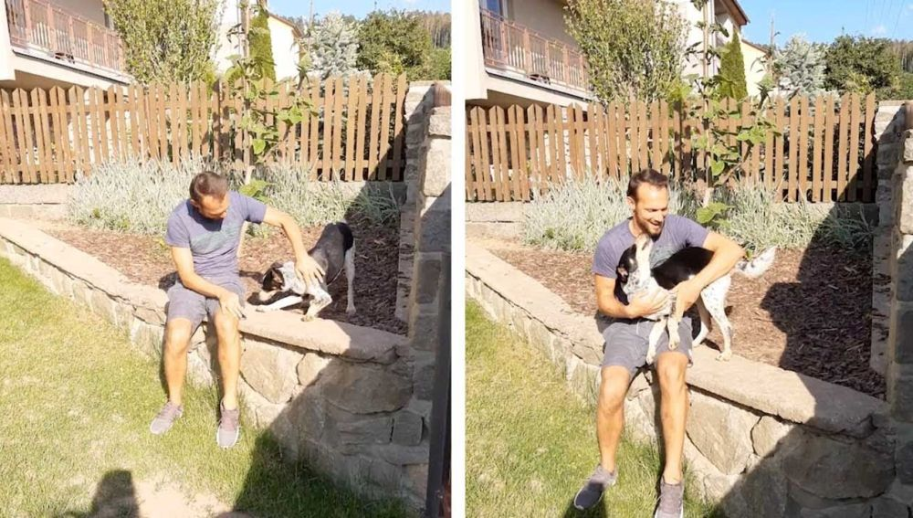 Perro abraza a su dueño