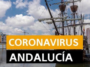 Coronavirus Andalucía: Fase 2 y fase 3 de la desescalada del coronavirus, en directo   Última hora Andalucía