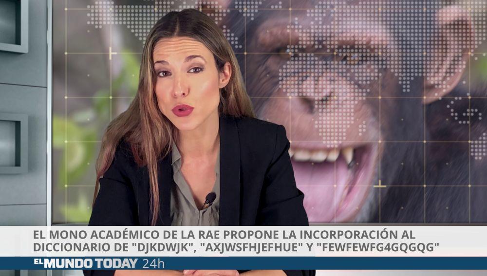 El mono académico de la RAE