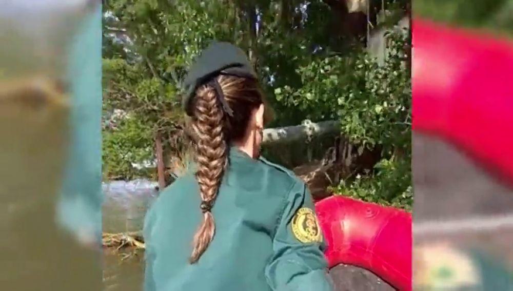 La Policía busca a un cocodrilo que se pasea por Valladolid provocando el pánico entre los vecinos