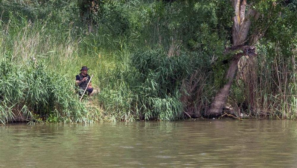 Integrantes del SEPRONA de la Guardia Civil y de la Policía Local de Simancas (Valladolid) continúan con la búsqueda de un cocodrilo avistado en la zona de Pesqueruela