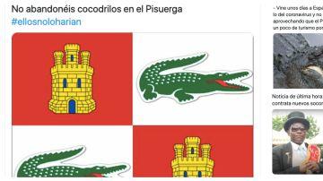 Memes deLos mejores memes del cocodrilo del río Pisuerga de Valladolid