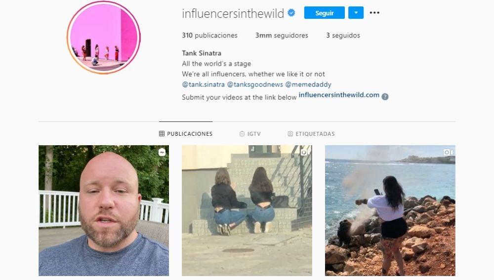 Instagram de @influencersinthewild