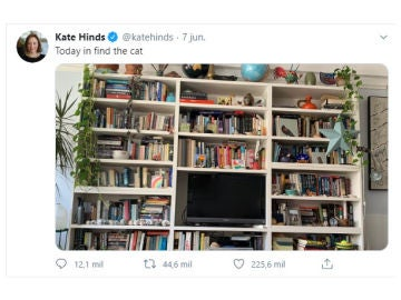 Tuit de @katehinds